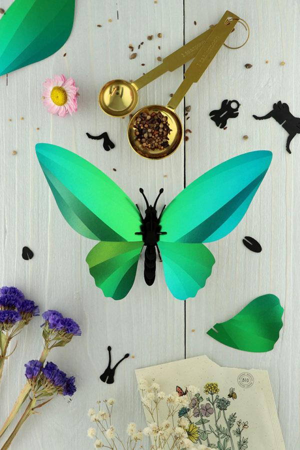 Assembli 3d paper insect birdwing butterfly