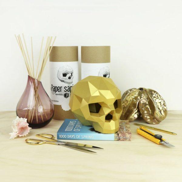 Assembli 3D Paper Sapiens Skull Kit