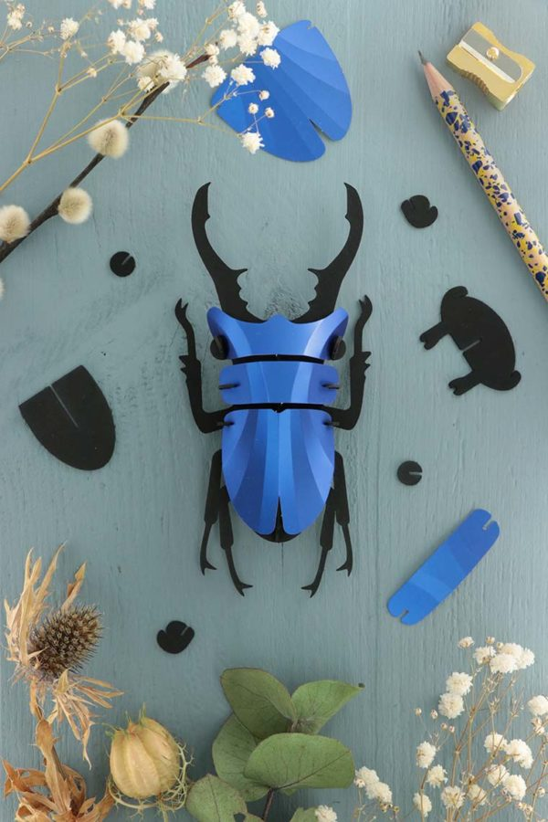Assembli 3d paper insect stag beetle blue