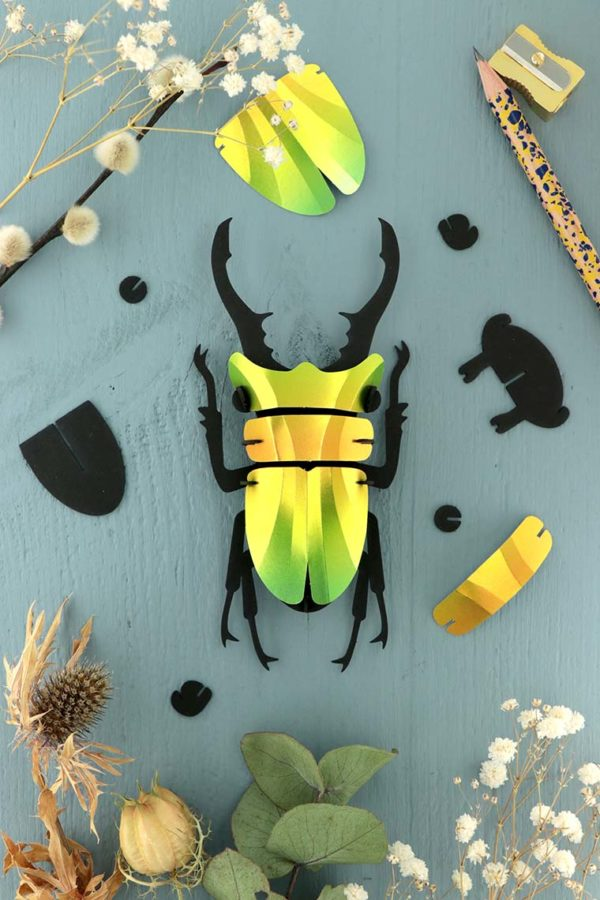 Assembli 3d paper insect stag beetle mango green