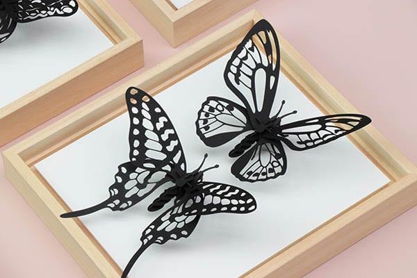 Assembli 3D Wooden Frames